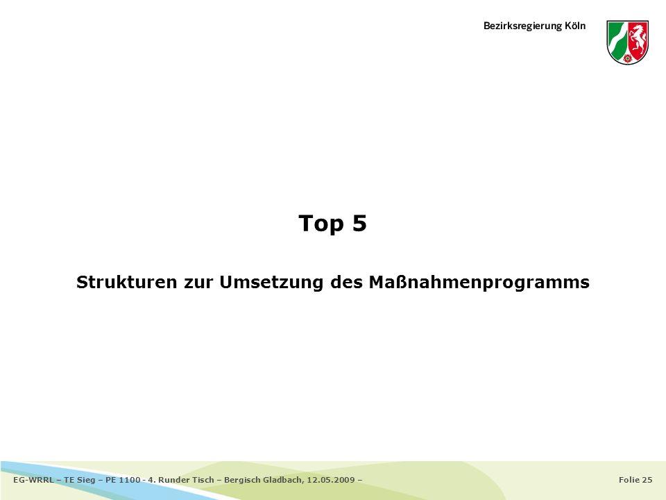 Folie 25EG-WRRL – TE Sieg – PE 1100 - 4. Runder Tisch – Bergisch Gladbach, 12.05.2009 – Top 5 Strukturen zur Umsetzung des Maßnahmenprogramms