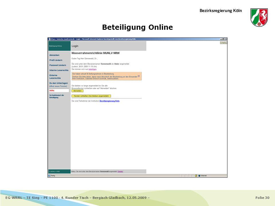 Folie 30EG-WRRL – TE Sieg – PE 1100 - 4. Runder Tisch – Bergisch Gladbach, 12.05.2009 – Beteiligung Online