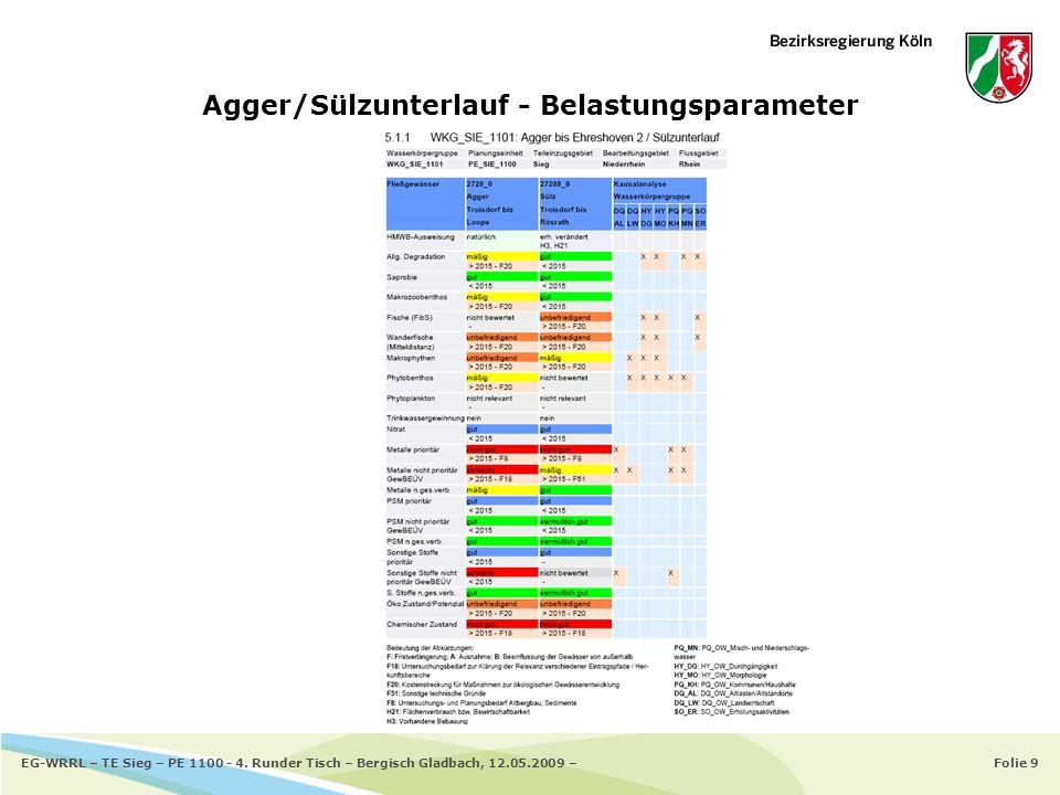 Folie 9EG-WRRL – TE Sieg – PE 1100 - 4. Runder Tisch – Bergisch Gladbach, 12.05.2009 – Agger/Sülzunterlauf - Belastungsparameter