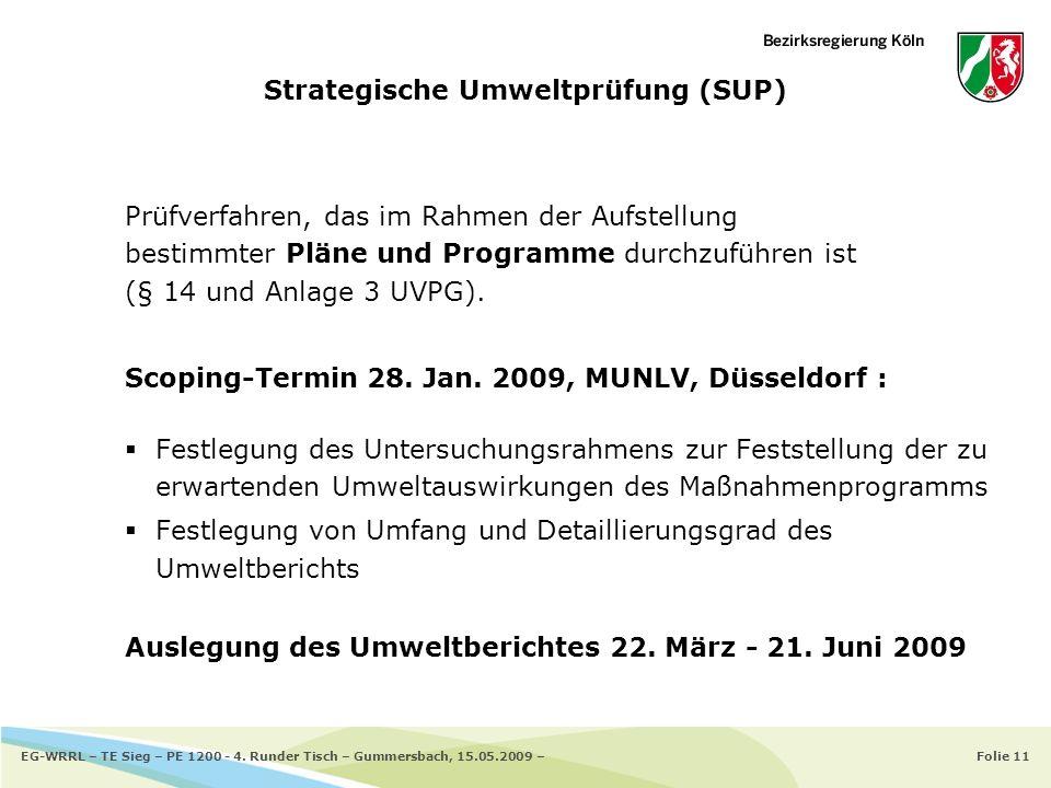 Folie 11EG-WRRL – TE Sieg – PE 1200 - 4. Runder Tisch – Gummersbach, 15.05.2009 – Strategische Umweltprüfung (SUP) Prüfverfahren, das im Rahmen der Au