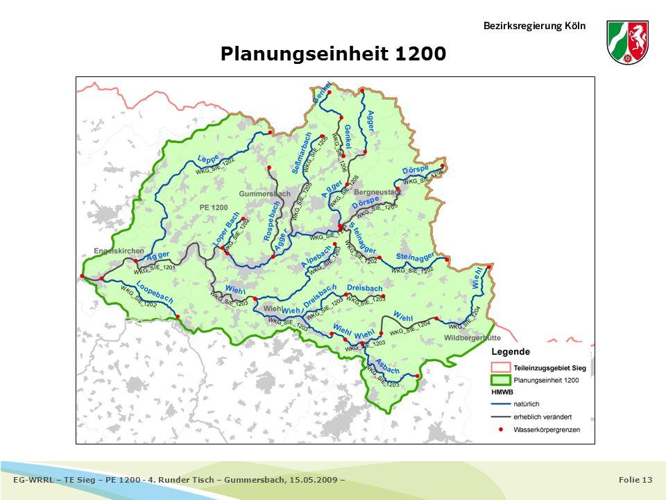 Folie 13EG-WRRL – TE Sieg – PE 1200 - 4. Runder Tisch – Gummersbach, 15.05.2009 – Planungseinheit 1200