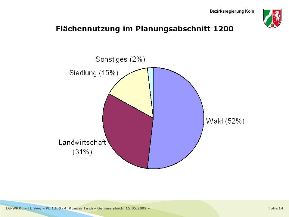 Folie 14EG-WRRL – TE Sieg – PE 1200 - 4. Runder Tisch – Gummersbach, 15.05.2009 – Flächennutzung im Planungsabschnitt 1200
