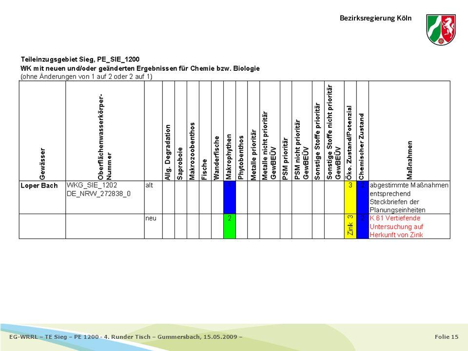Folie 15EG-WRRL – TE Sieg – PE 1200 - 4. Runder Tisch – Gummersbach, 15.05.2009 –