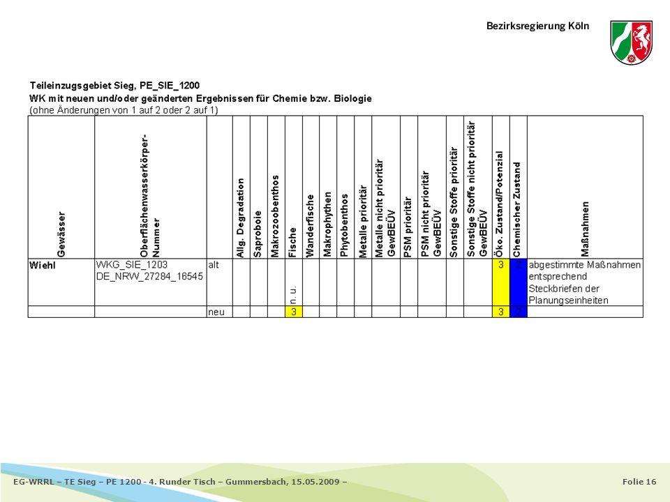 Folie 16EG-WRRL – TE Sieg – PE 1200 - 4. Runder Tisch – Gummersbach, 15.05.2009 –