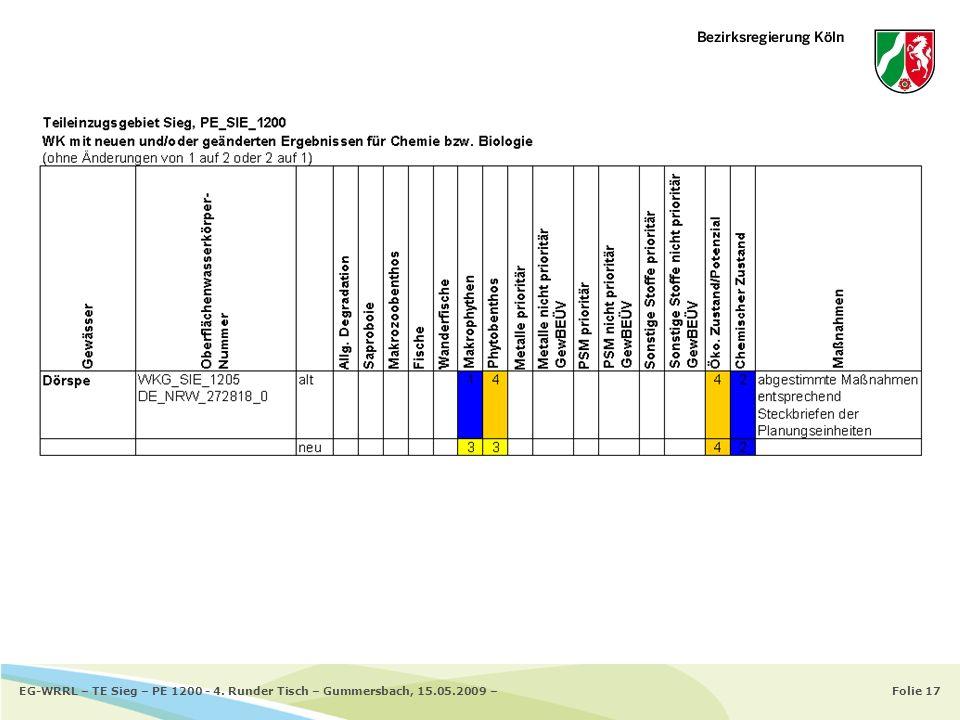 Folie 17EG-WRRL – TE Sieg – PE 1200 - 4. Runder Tisch – Gummersbach, 15.05.2009 –