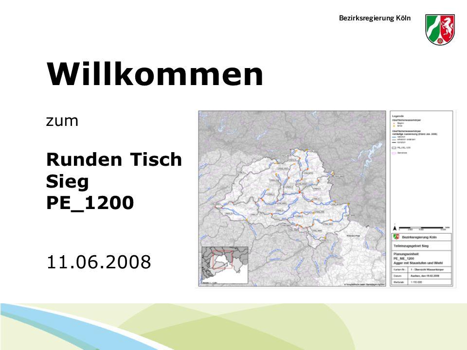 Februar 14 - Folie 1 Willkommen zum Runden Tisch Sieg PE_1200 11.06.2008