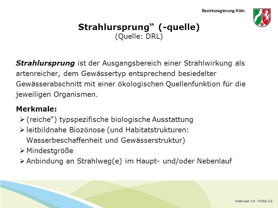 Februar 14 - Folie 23 Strahlursprung (-quelle) (Quelle: DRL) Strahlursprung ist der Ausgangsbereich einer Strahlwirkung als artenreicher, dem Gewässer