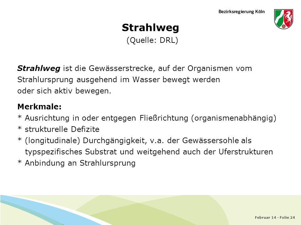 Februar 14 - Folie 24 Strahlweg (Quelle: DRL) Strahlweg ist die Gewässerstrecke, auf der Organismen vom Strahlursprung ausgehend im Wasser bewegt werd