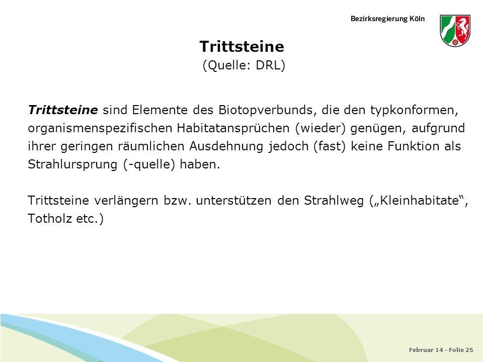 Februar 14 - Folie 25 Trittsteine (Quelle: DRL) Trittsteine sind Elemente des Biotopverbunds, die den typkonformen, organismenspezifischen Habitatansp