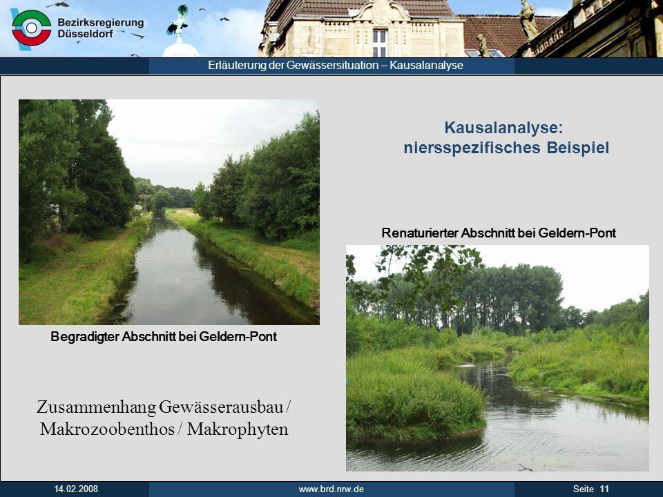 www.brd.nrw.de 11Seite 14.02.2008 Erläuterung der Gewässersituation – Kausalanalyse Begradigter Abschnitt bei Geldern-Pont Renaturierter Abschnitt bei