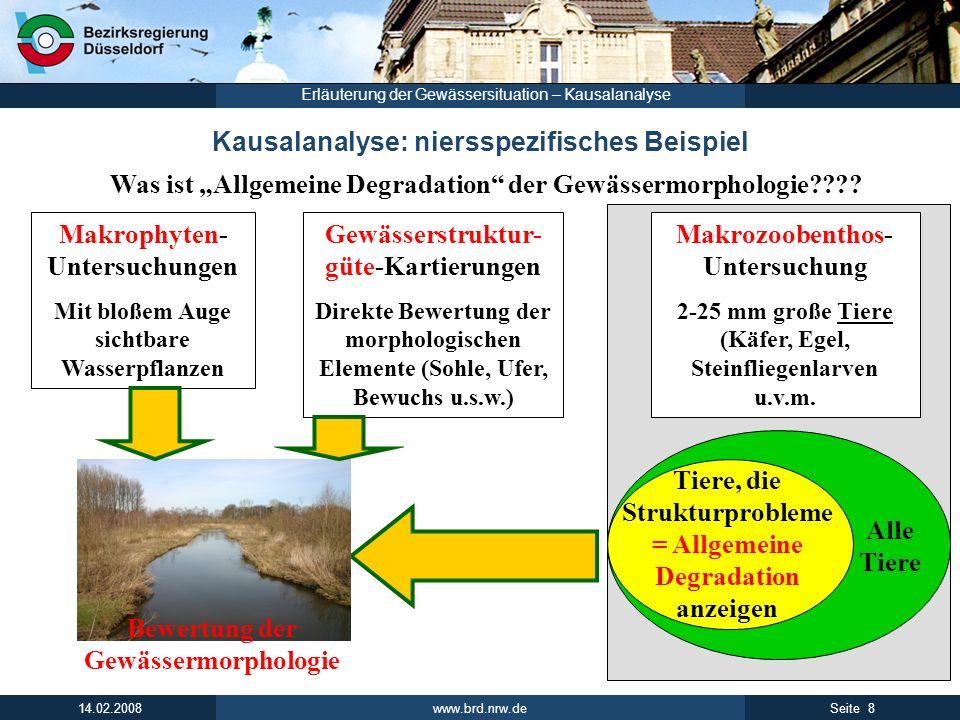 www.brd.nrw.de 8Seite 14.02.2008 Erläuterung der Gewässersituation – Kausalanalyse Kausalanalyse: niersspezifisches Beispiel Was ist Allgemeine Degrad