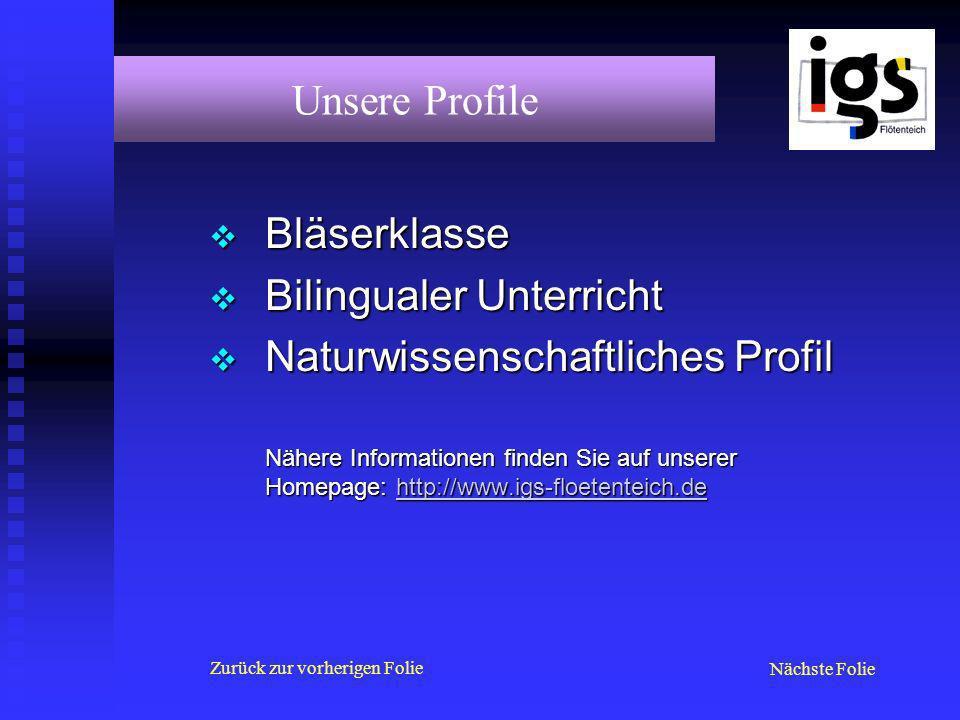 Bläserklasse Bläserklasse Bilingualer Unterricht Bilingualer Unterricht Naturwissenschaftliches Profil Naturwissenschaftliches Profil Nähere Informati