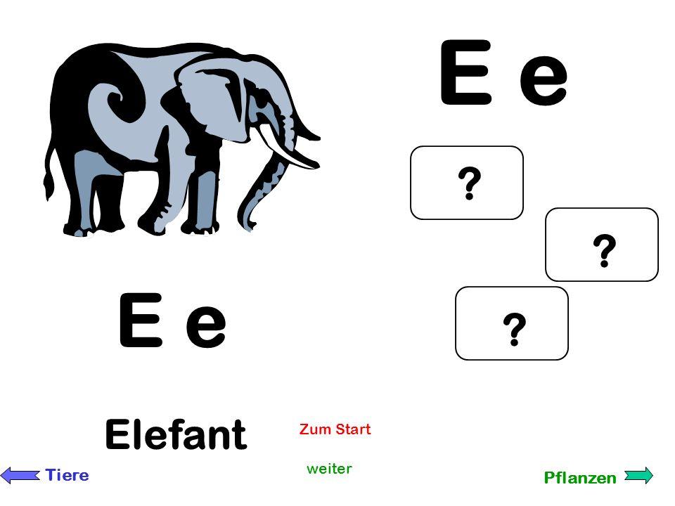 A a Affen A a weiter Tiere Pflanzen ? ? ? Zum Start