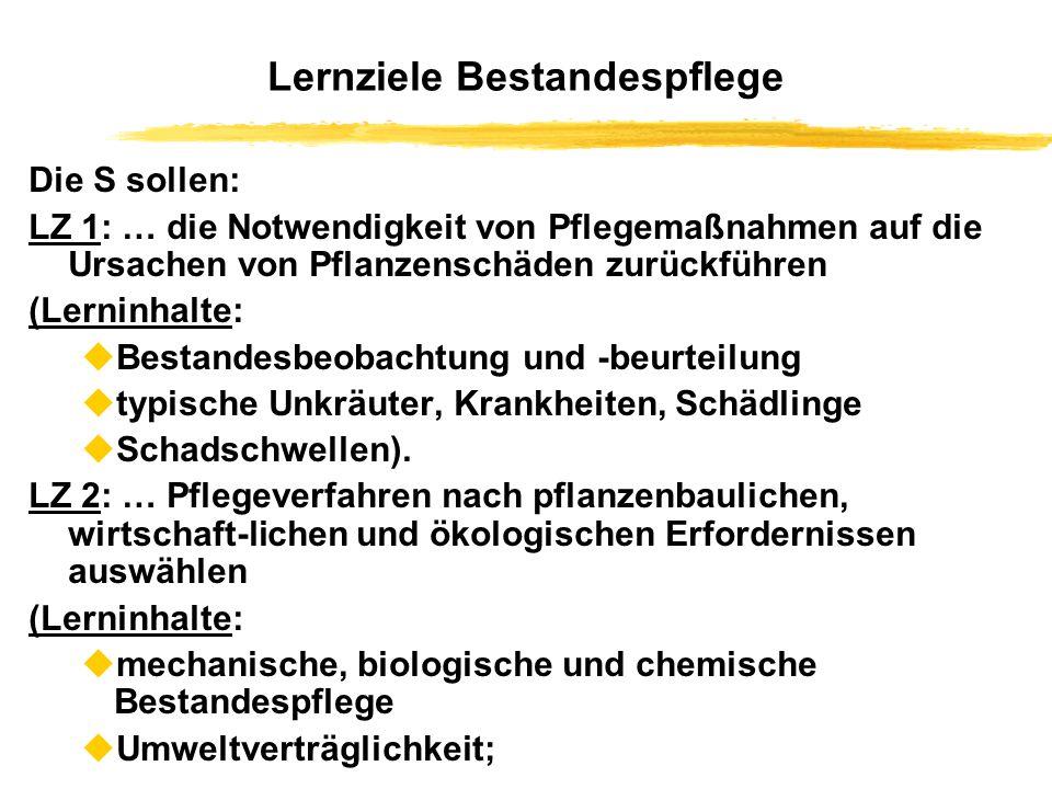Lernziele Bestandespflege Die S sollen: LZ 1: … die Notwendigkeit von Pflegemaßnahmen auf die Ursachen von Pflanzenschäden zurückführen (Lerninhalte: