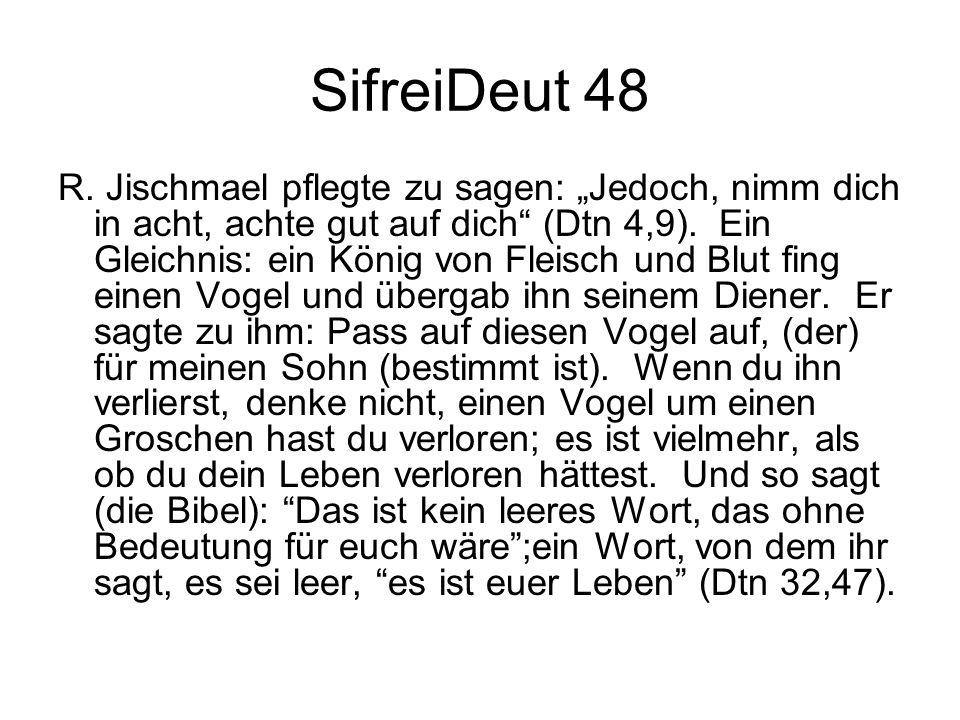 SifreiDeut 48 R. Jischmael pflegte zu sagen: Jedoch, nimm dich in acht, achte gut auf dich (Dtn 4,9). Ein Gleichnis: ein König von Fleisch und Blut fi