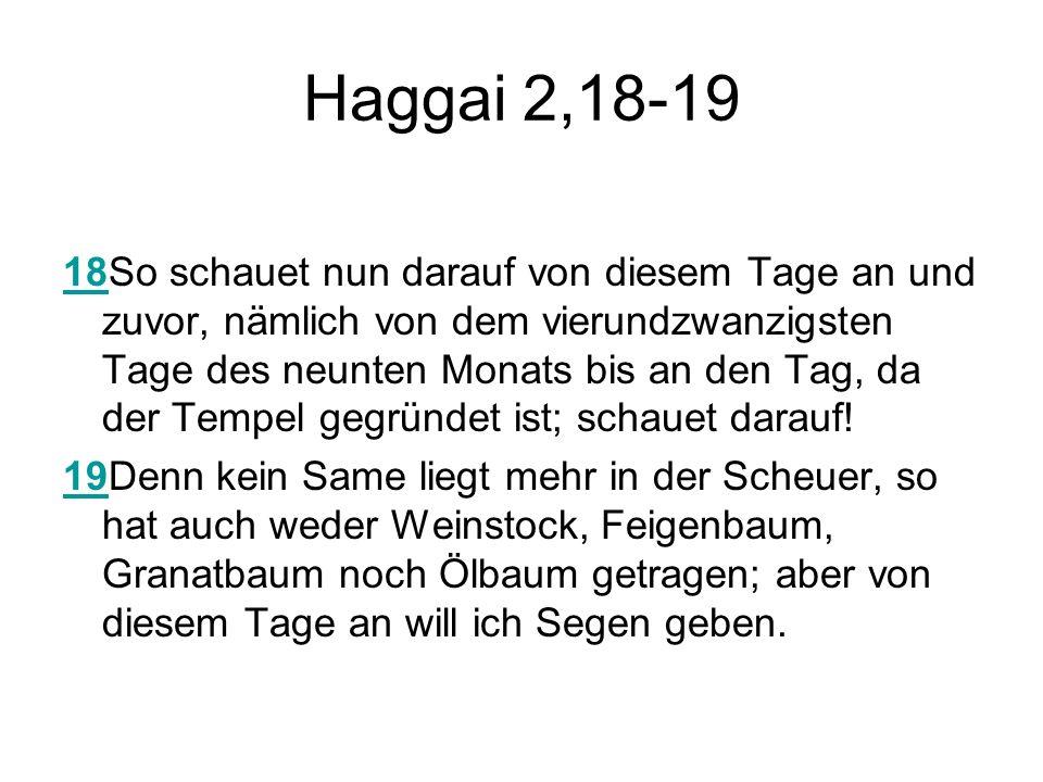 Haggai 2,18-19 1818So schauet nun darauf von diesem Tage an und zuvor, nämlich von dem vierundzwanzigsten Tage des neunten Monats bis an den Tag, da d