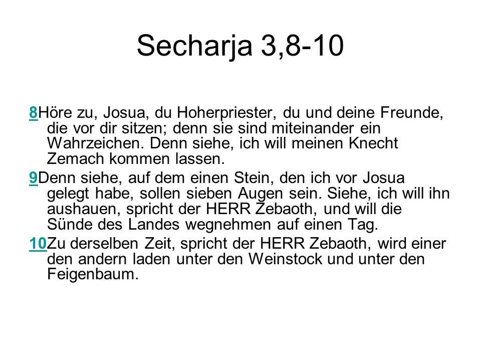 Secharja 3,8-10 88Höre zu, Josua, du Hoherpriester, du und deine Freunde, die vor dir sitzen; denn sie sind miteinander ein Wahrzeichen. Denn siehe, i