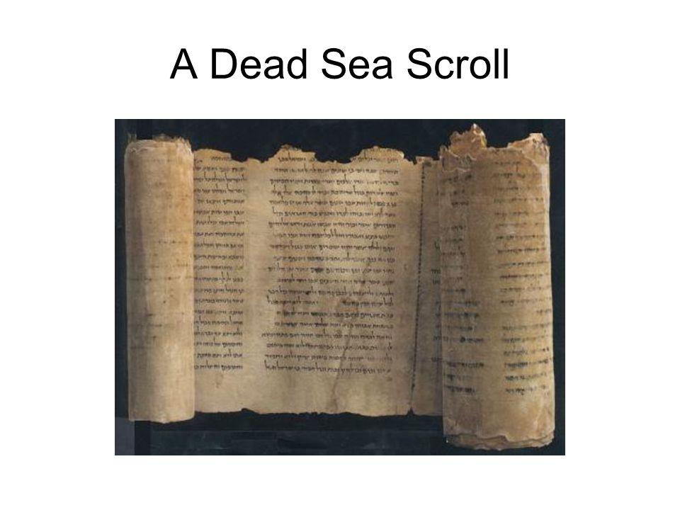 A Dead Sea Scroll