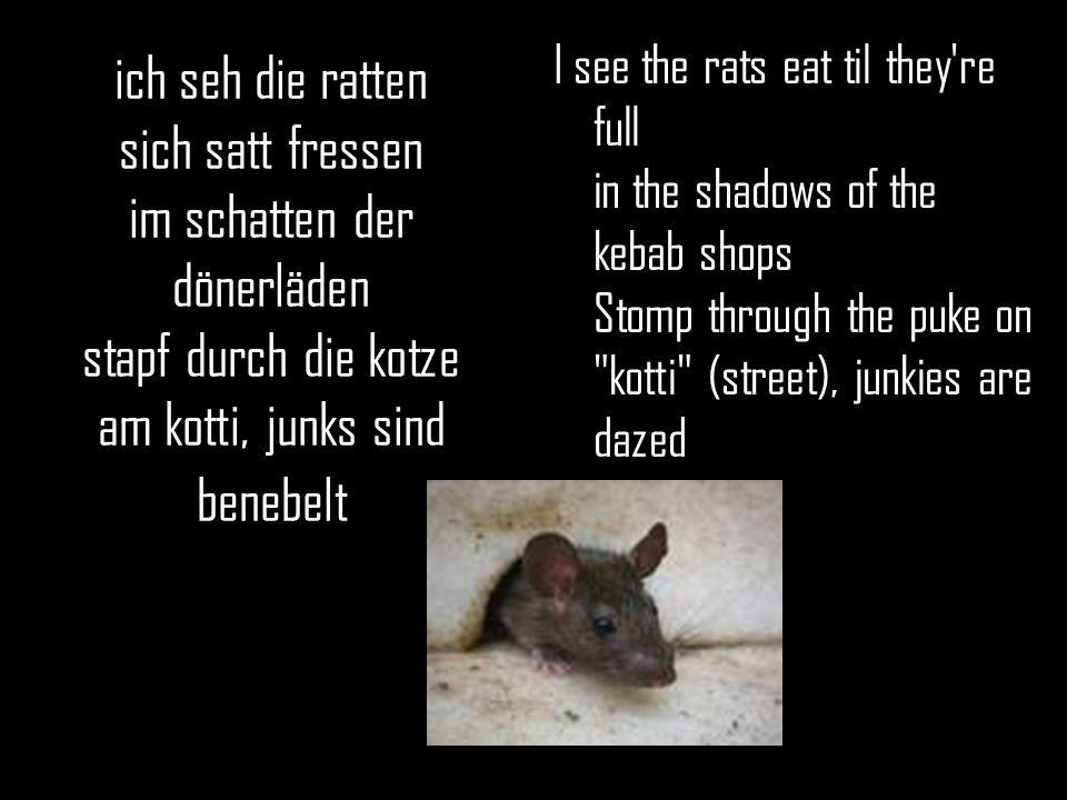 ich seh die ratten sich satt fressen im schatten der dönerläden stapf durch die kotze am kotti, junks sind benebelt I see the rats eat til they're ful