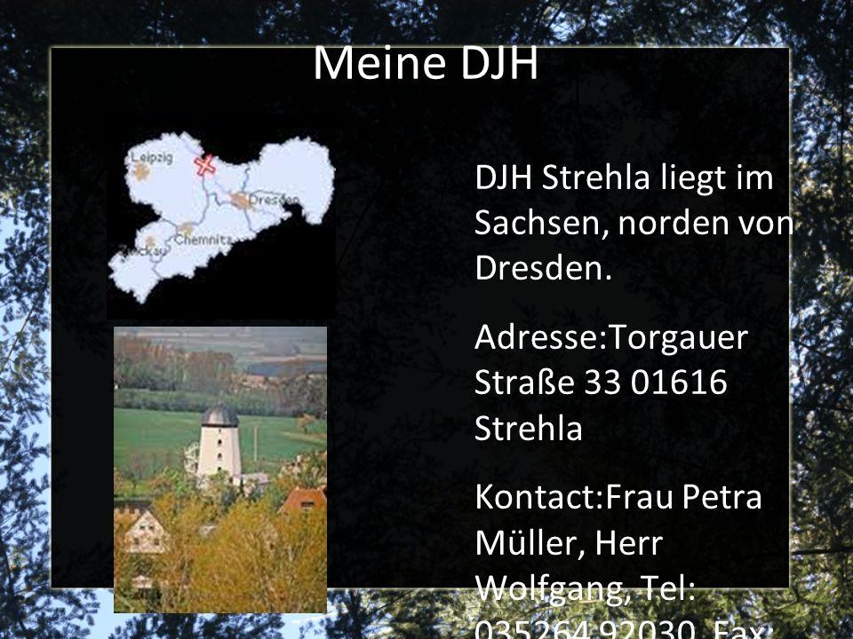 Meine DJH DJH Strehla liegt im Sachsen, norden von Dresden. Adresse:Torgauer Straße 33 01616 Strehla Kontact:Frau Petra Müller, Herr Wolfgang, Tel: 03