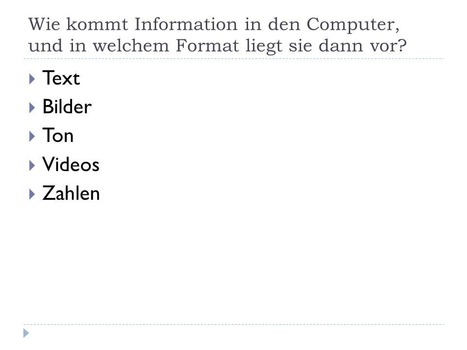 Wie kommt Information in den Computer, und in welchem Format liegt sie dann vor? Text Bilder Ton Videos Zahlen