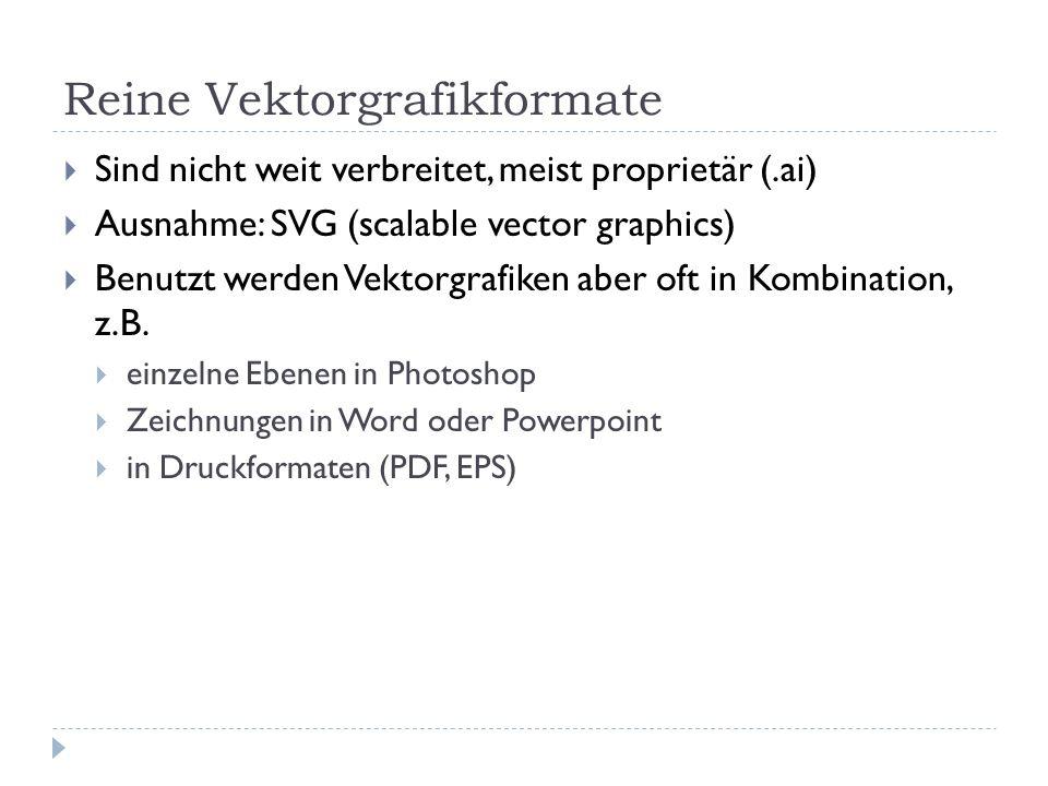 Reine Vektorgrafikformate Sind nicht weit verbreitet, meist proprietär (.ai) Ausnahme: SVG (scalable vector graphics) Benutzt werden Vektorgrafiken ab