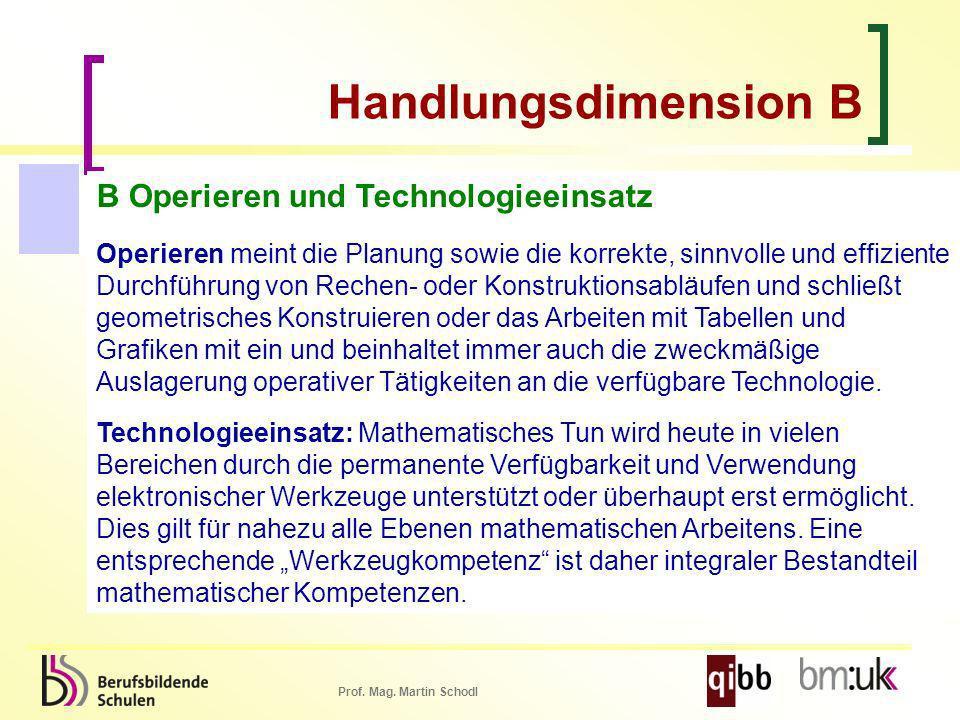Prof. Mag. Martin Schodl B Operieren und Technologieeinsatz Operieren meint die Planung sowie die korrekte, sinnvolle und effiziente Durchführung von