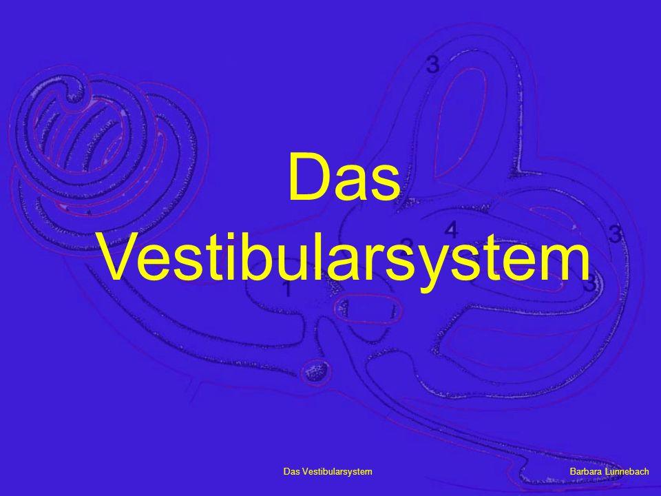 Barbara LunnebachDas Vestibularsystem Struktur des Innenohrs Canales semicirculares Sacculus Utriculus