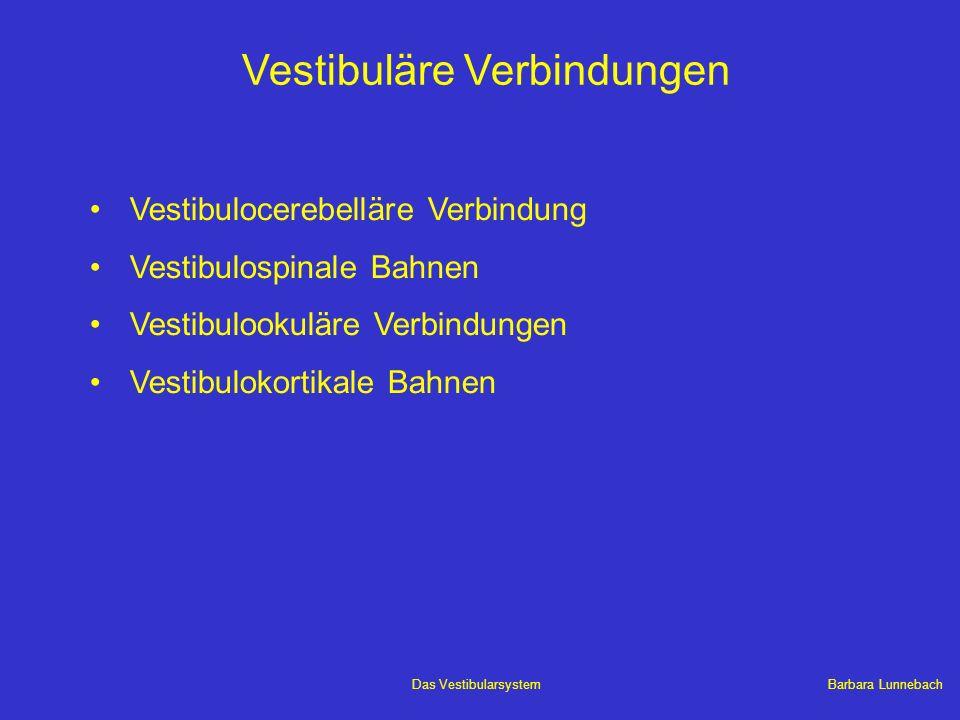 Barbara LunnebachDas Vestibularsystem Vestibuläre Verbindungen Vestibulocerebelläre Verbindung Vestibulospinale Bahnen Vestibulookuläre Verbindungen V