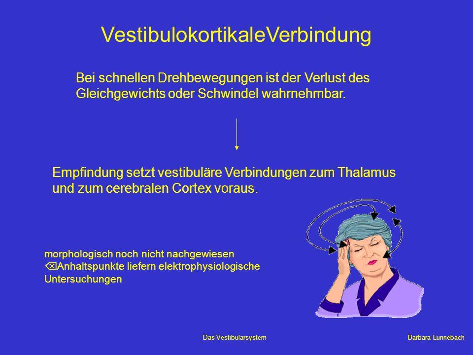 Barbara LunnebachDas Vestibularsystem VestibulokortikaleVerbindung Bei schnellen Drehbewegungen ist der Verlust des Gleichgewichts oder Schwindel wahr