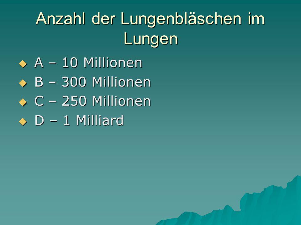 Anzahl der Lungenbläschen im Lungen A – 10 Millionen A – 10 Millionen B – 300 Millionen B – 300 Millionen C – 250 Millionen C – 250 Millionen D – 1 Milliard D – 1 Milliard