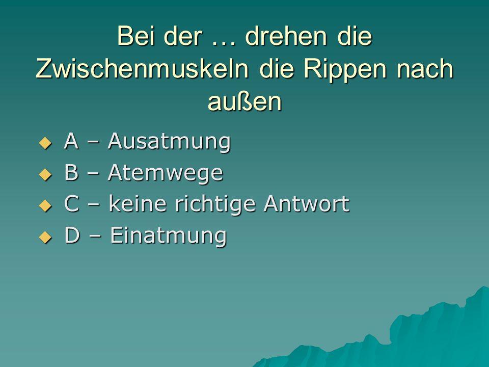 Bei der … drehen die Zwischenmuskeln die Rippen nach außen A – Ausatmung A – Ausatmung B – Atemwege B – Atemwege C – keine richtige Antwort C – keine richtige Antwort D – Einatmung D – Einatmung