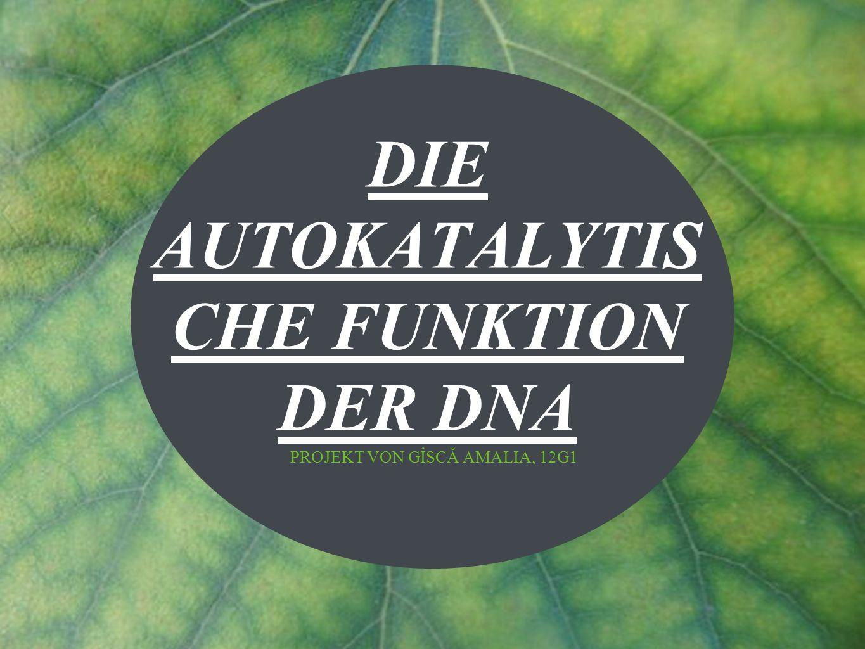Unter autokatalytischer Funktion versteht man, die Eigenschaft der DNA, sich zu verdoppeln.
