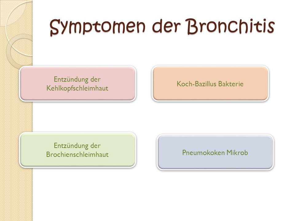 Symptomen der Bronchitis Entzündung der Kehlkopfschleimhaut Entzündung der Kehlkopfschleimhaut Pneumokoken Mikrob Entzündung der Brochienschleimhaut Entzündung der Brochienschleimhaut Koch-Bazillus Bakterie