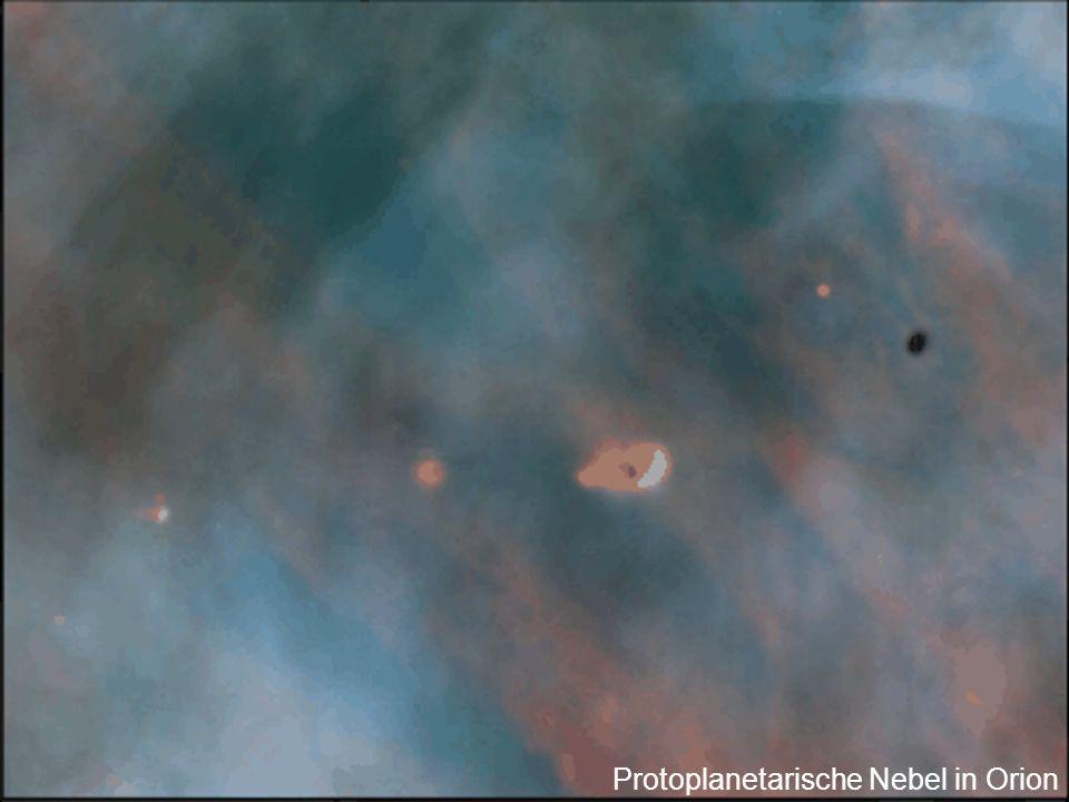 Protoplanetarische Nebel in Orion