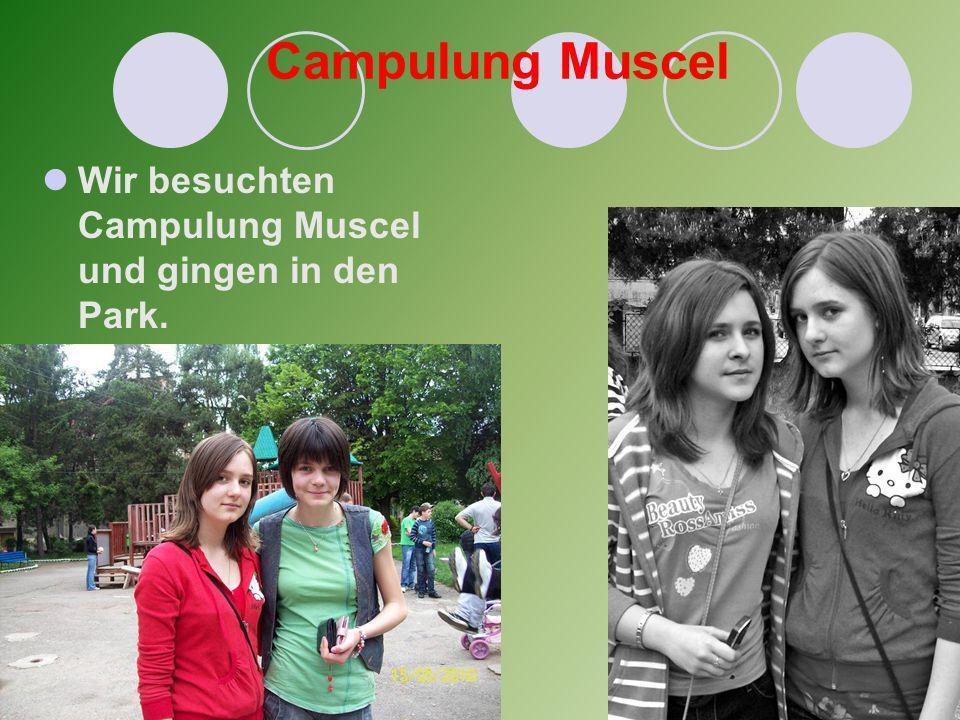 Campulung Muscel Wir besuchten Campulung Muscel und gingen in den Park.