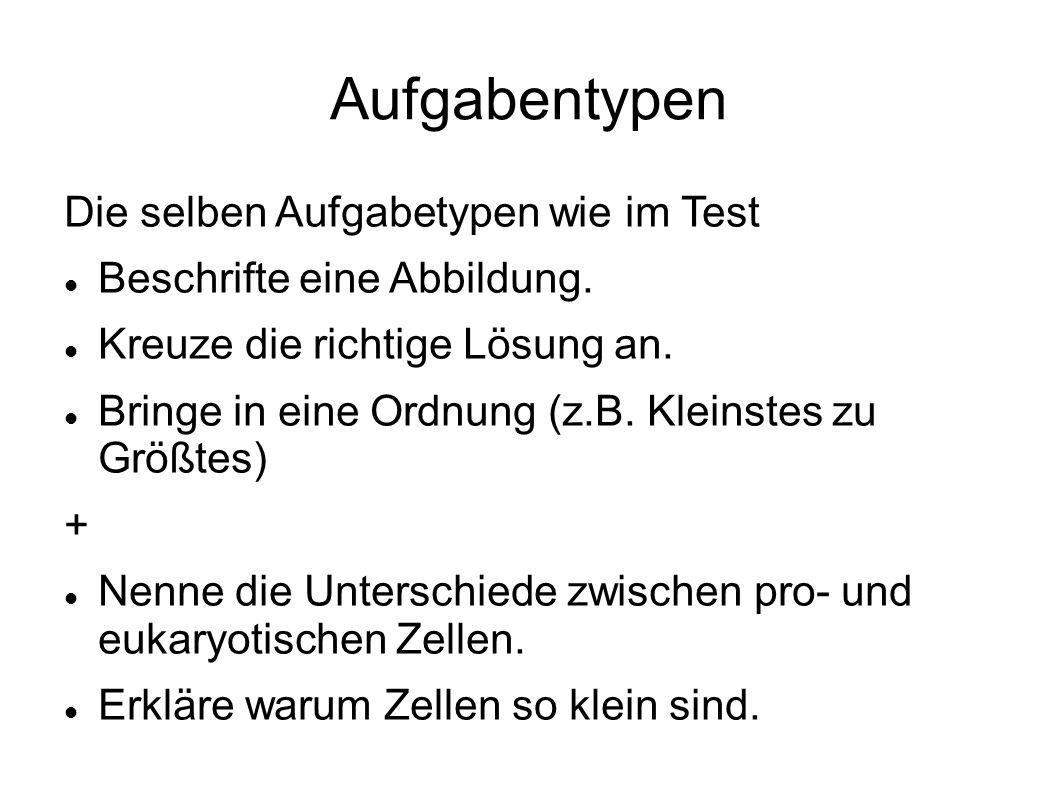 Aufgabentypen Die selben Aufgabetypen wie im Test Beschrifte eine Abbildung.