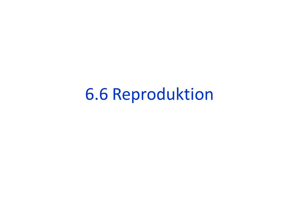 6.6 Reproduktion