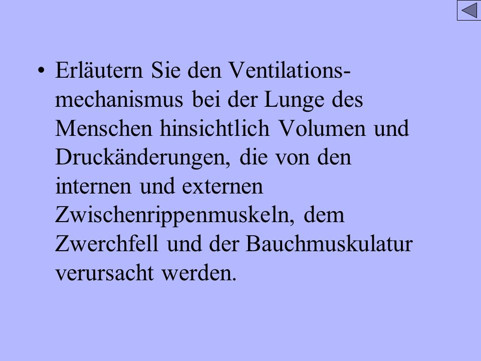Erläutern Sie den Ventilations- mechanismus bei der Lunge des Menschen hinsichtlich Volumen und Druckänderungen, die von den internen und externen Zwi