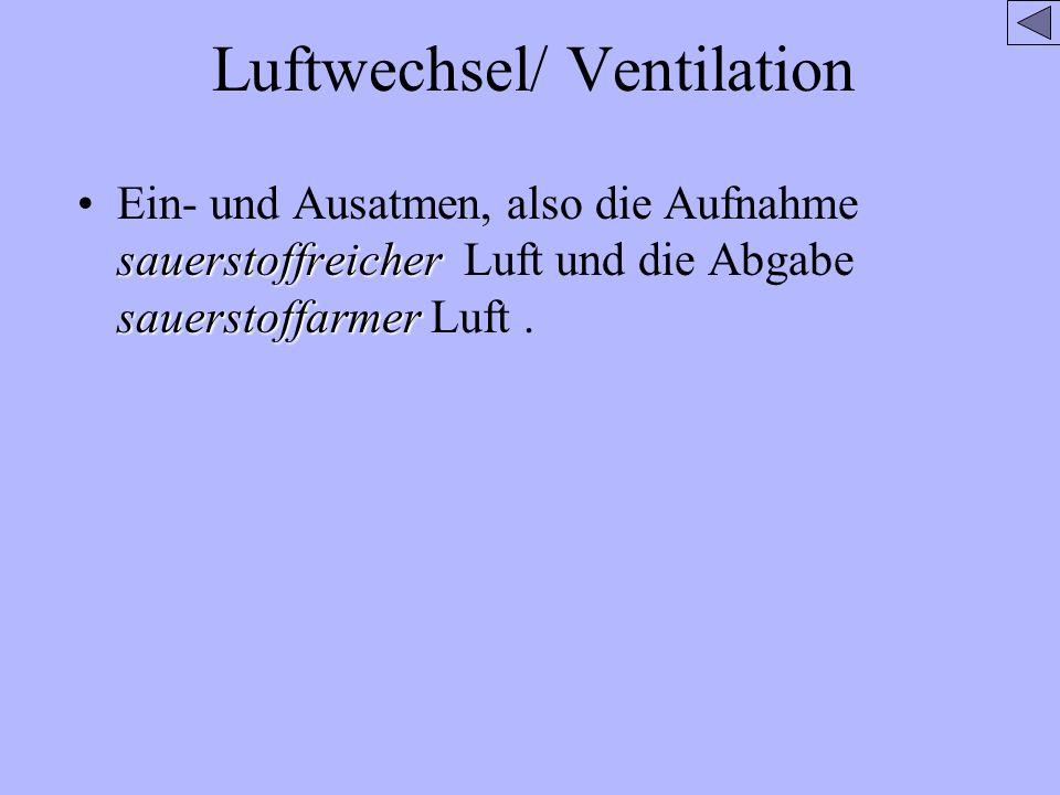 Luftwechsel/ Ventilation sauerstoffreicher sauerstoffarmerEin- und Ausatmen, also die Aufnahme sauerstoffreicher Luft und die Abgabe sauerstoffarmer L