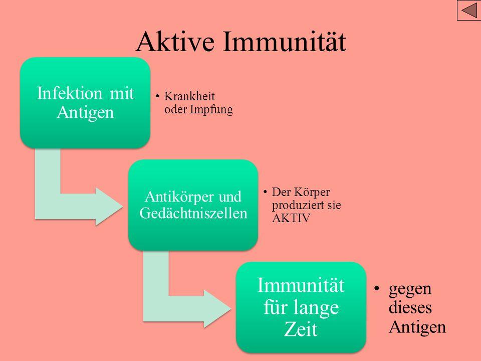 IB-Aufgaben Umreißen Sie das Prinzip von Herausforderung und Reaktion, Klonselektion und Gedächtniszellen als Grundlage der Immunität. Definieren Sie