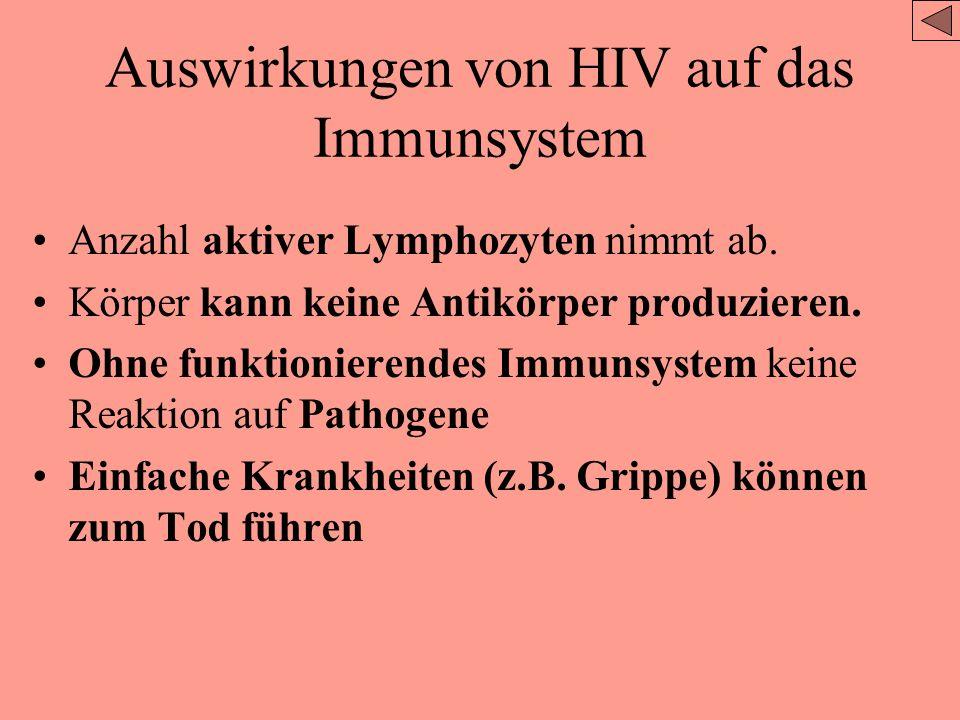 Ursache, Übertragung und gesellschaftliche Auswirkungen von AIDS HIV –