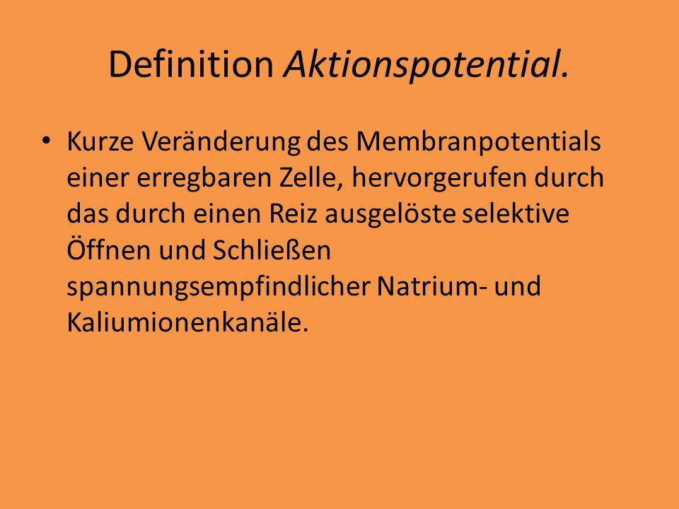 Definition Aktionspotential. Kurze Veränderung des Membranpotentials einer erregbaren Zelle, hervorgerufen durch das durch einen Reiz ausgelöste selek