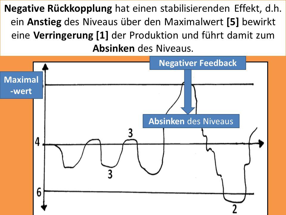 Negative Rückkopplung hat einen stabilisierenden Effekt, d.h. ein Anstieg des Niveaus über den Maximalwert [5] bewirkt eine Verringerung [1] der Produ