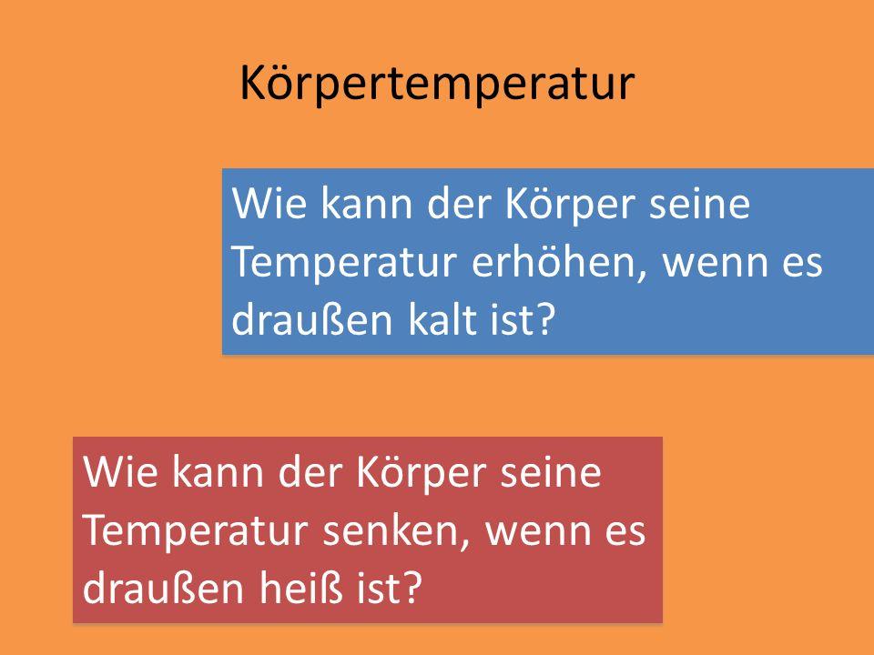 Körpertemperatur Wie kann der Körper seine Temperatur erhöhen, wenn es draußen kalt ist? Wie kann der Körper seine Temperatur senken, wenn es draußen