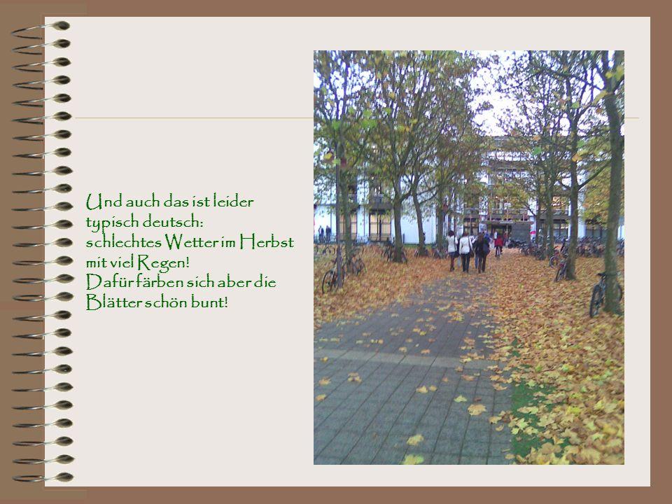Und auch das ist leider typisch deutsch: schlechtes Wetter im Herbst mit viel Regen! Dafür färben sich aber die Blätter schön bunt!