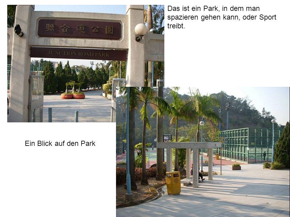 Das ist ein Park, in dem man spazieren gehen kann, oder Sport treibt. Ein Blick auf den Park