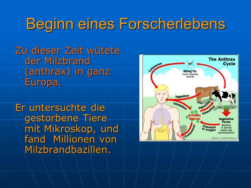 Beginn eines Forscherlebens Zu dieser Zeit wütete der Milzbrand (anthrax) in ganz Europa. Er untersuchte die gestorbene Tiere mit Mikroskop, und fand