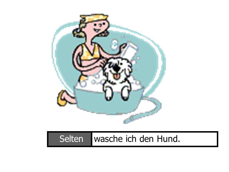 Ich wasche den HundSeltenwasche ich den Hund.