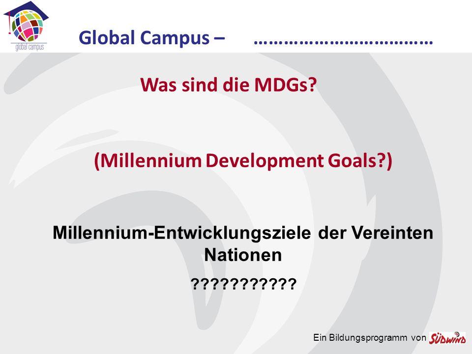 Ein Bildungsprogramm von Was sind die MDGs.